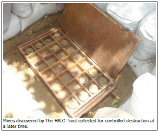 Mines discovered by The HALO Trust collected for controlled destruction at a later time.