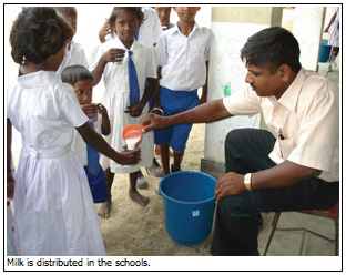 Milk is distributed in the schools.